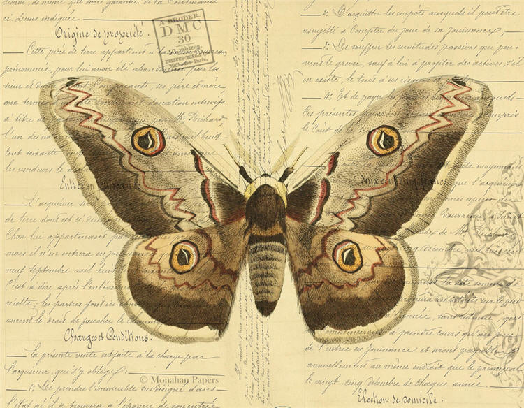 Monahan papers tan butterfly