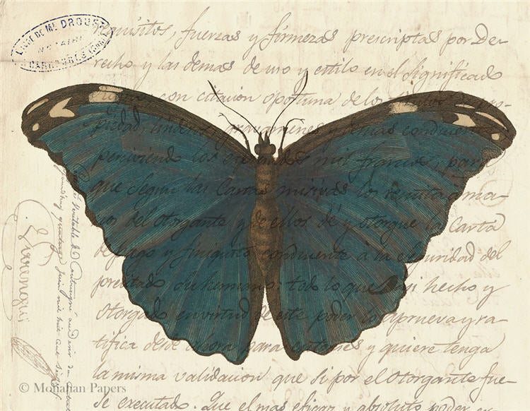 Monahan papers dark blue butterfly