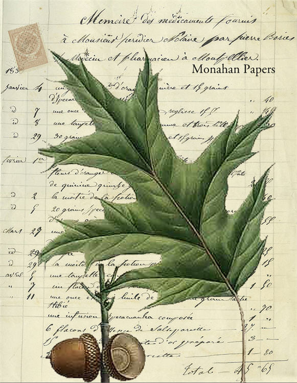 monahan paper x327BB leaves and acorns 3