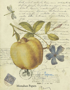 monahan papers z328bb Fruit and floral