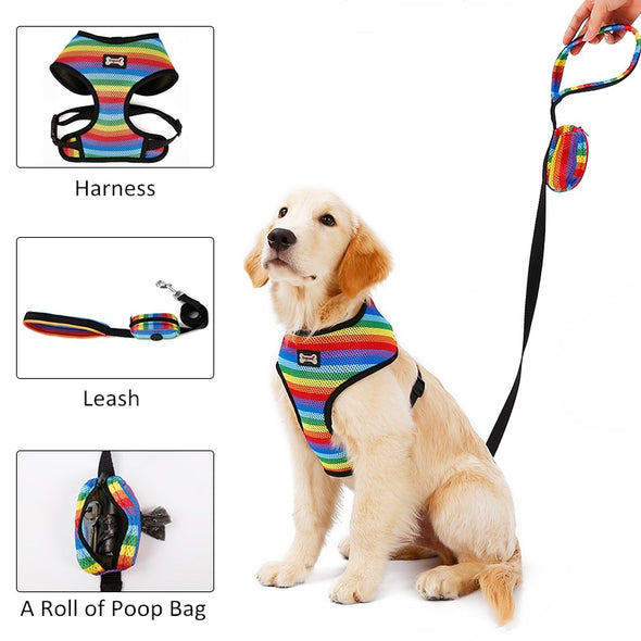 Dog Harness with Leash Set Basketie