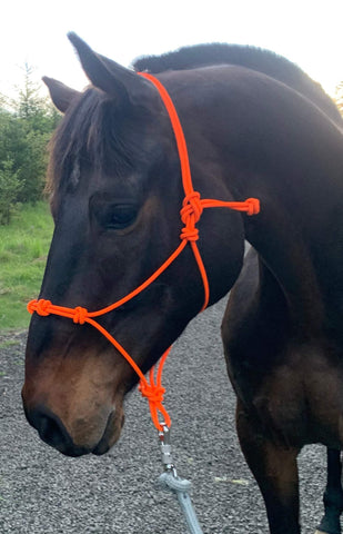 Safety Orange Rope Halter