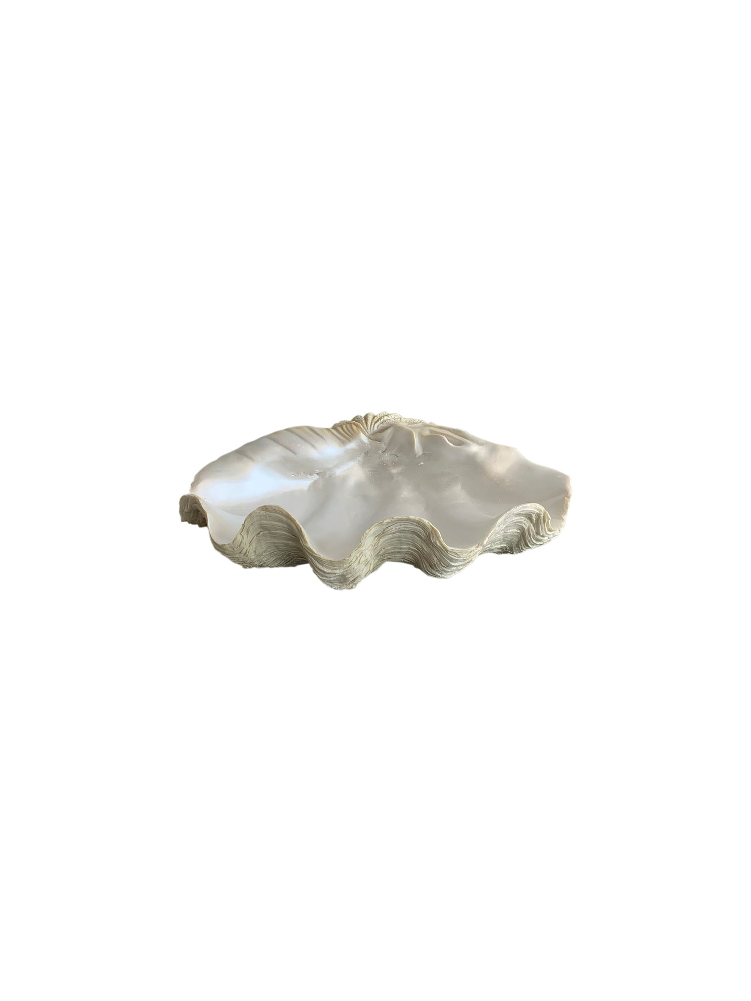 Polyresin Clam Shell