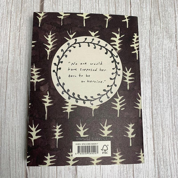Northanger Abbey Vintage Classics - JaneAusten.co.uk