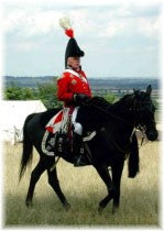 Colonel of Mounted Infantry