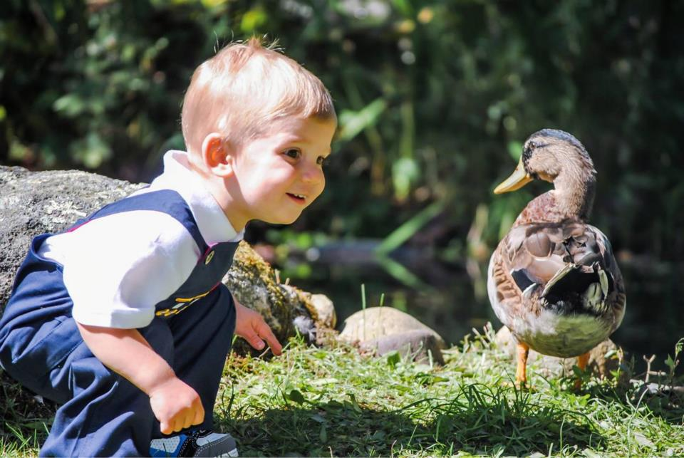 Our Nephew gets up close and personal with one of the ducklings.