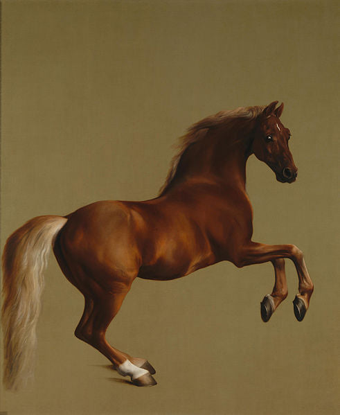 Whistlejacket by George Stubbs (1724–1806) circa 1762