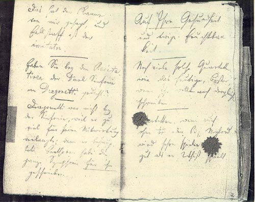 A page from one of Beethoven's conversation books.