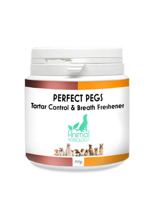 Perfect Pegs dog teeth cleaning product