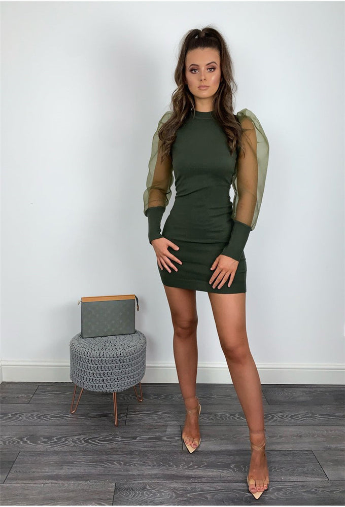 Elegant Mesh Sheer Long Sleeve Bodycon Mini Dress