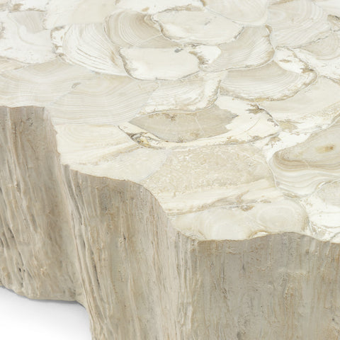 Palecek Camilla Fossilized Clam Coffee Table