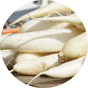 radish root is a powerful and amazing skincare ingredient