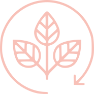 Ethical and Sustainable skincare brand