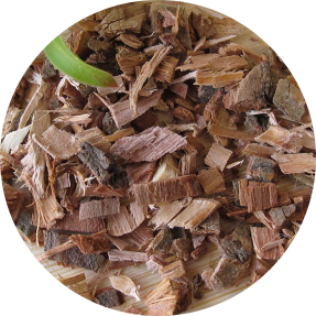 benefits of white willow bark in your skincare regime