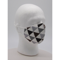 Triangle Design Face Mask w PM2.5 Filter - Bearified Gear