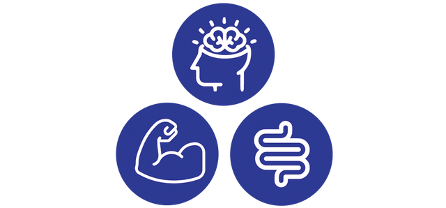 mind, body, and gut icon