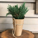 faux plant in paper pot