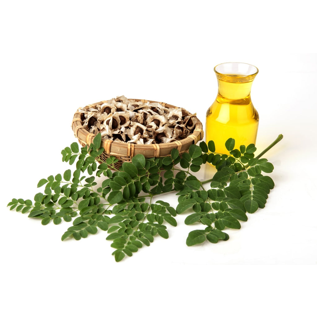 MORINGA SEED COLD PRESSED FROM GHANA 50ML