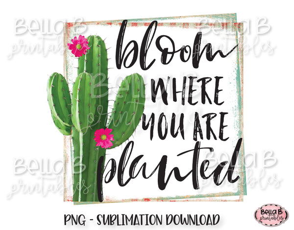 Cactus Sublimation Design, Bloom Where You Are Planted Sublimation