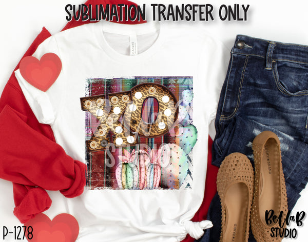 XOXO Serape With Cactus Sublimation Transfer, Ready To Press