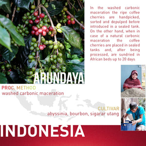 ARUNDAYA  - INDONESIA - Washed