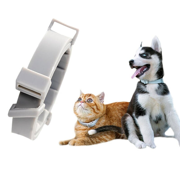 Dog Cat Collar Anti Flea Ticks