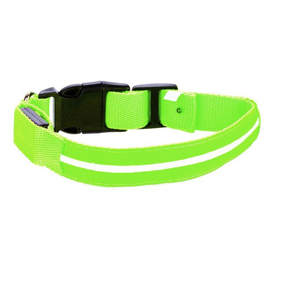 Safety LED Pet Dog Collar