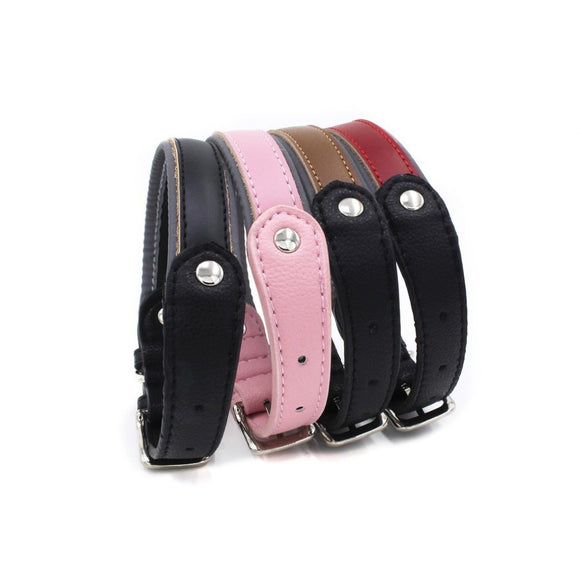 Pet Leash Collar Dog Training