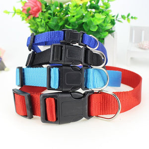 Outdoor Durable Shinning Pet Leash