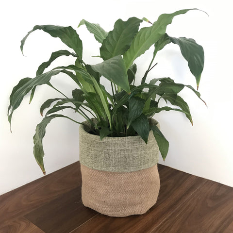 Olive Woven Cotton & Natural Hessian Plant Pot Cover