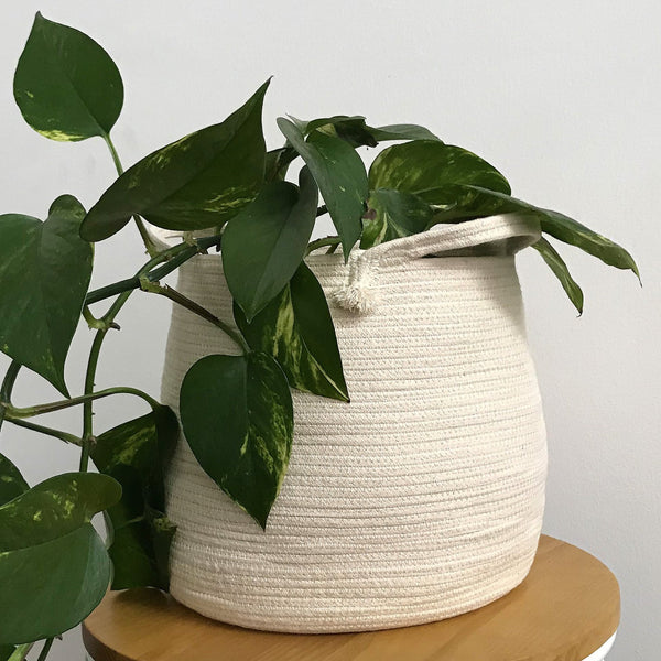 Natural Rope Basket with Handle