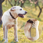 Load image into Gallery viewer, A Dog Wearing A Solid Metal Military Style Bronze Dog Tag