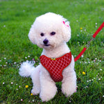 Load image into Gallery viewer, Rhinestone Dog Harness & Leash, Red,Pink,Blue,Black, S & L