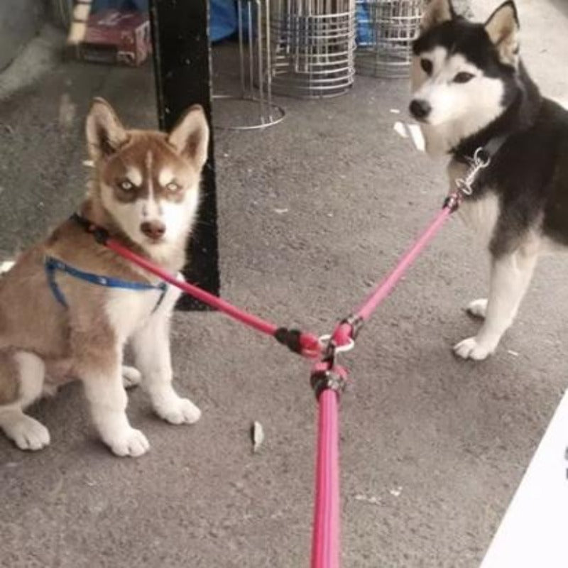 2 Dogs On A Toggy Doggy Red Dual Dog Leash