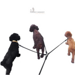 Load image into Gallery viewer, 3 Dogs Walking With A Black Detachable Triple Leash with Foam Handle