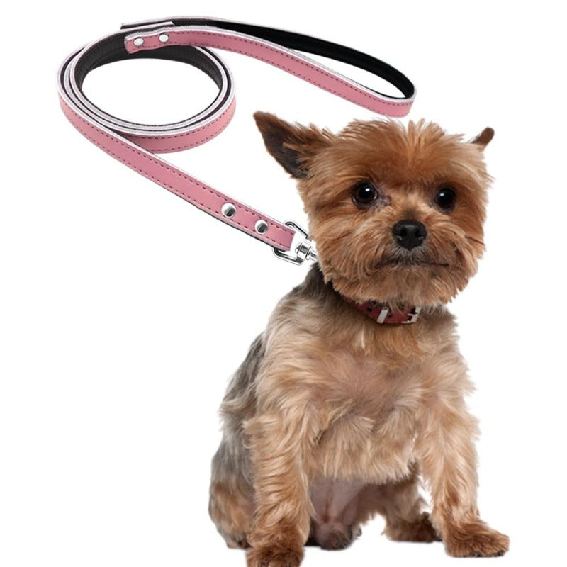 A Dog Wearing A Toggy Doggy Pink Leather Dog Leash