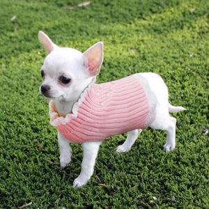 A Dog Wearing The Pearl Knitted Dog Pink Sweater