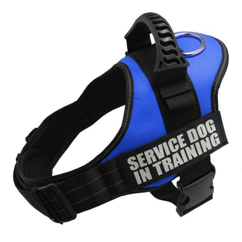 Blue Reflective Dog Vest Harness