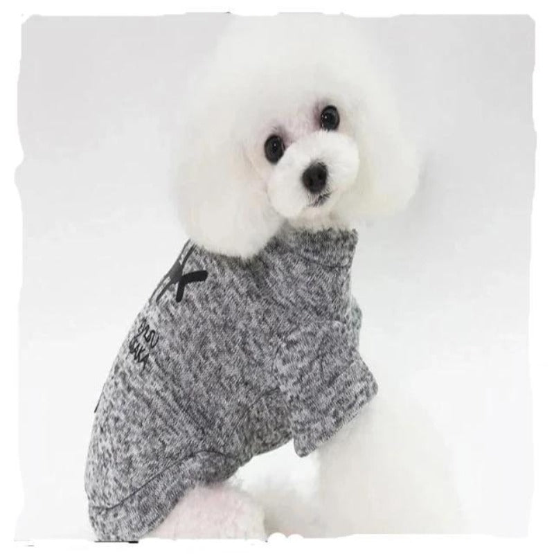 A Dog Wearing The Gray Fishbone Jacket