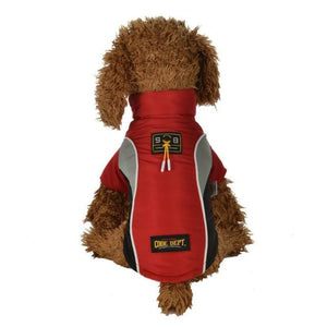A Dog Wearing A Red All Weather Dog Vest