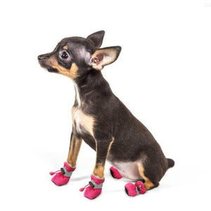 A Dog Wearing The Pink Soft Indoor Dog Booties
