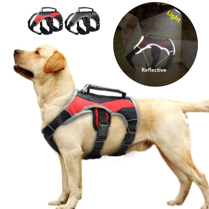 A Reflective Feature For Safety On A Reflective Training Dog Vest Harness