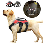 Load image into Gallery viewer, A Reflective Feature For Safety On A Reflective Training Dog Vest Harness