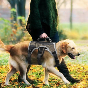 A Man Walking A Dog Wearing A Toggy Doggy Gray Camouflage Reflective Training Dog Vest Harness