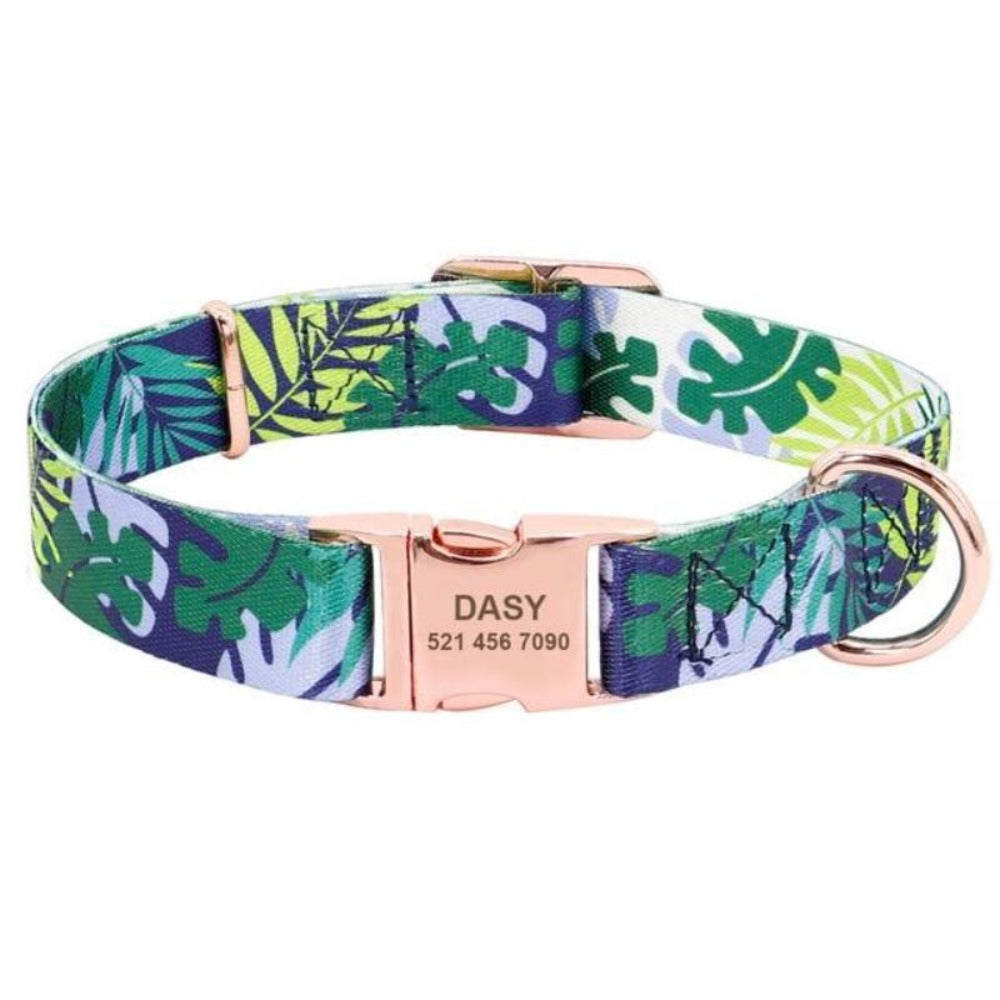 Blue-Green Nylon Customized Engraved Tag Collar with Metal Buckle and D-Ring
