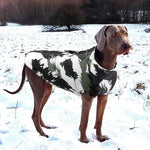 Load image into Gallery viewer, A Dog Wearing The Black Patterned Dog Vest