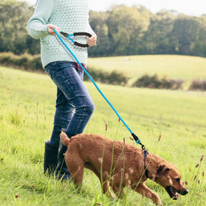 A Woman Walking A Dog On A Blue Reflective Long Dog Leash