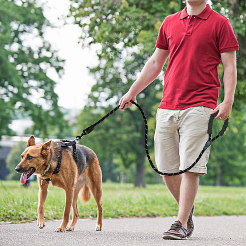 A Man Walking A Dog Using A Black Reflective Long Dog Leash