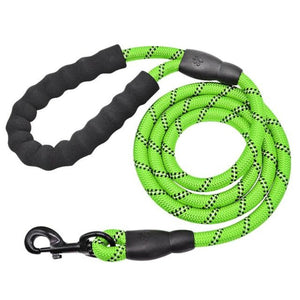 Green Reflective Long Dog Leash