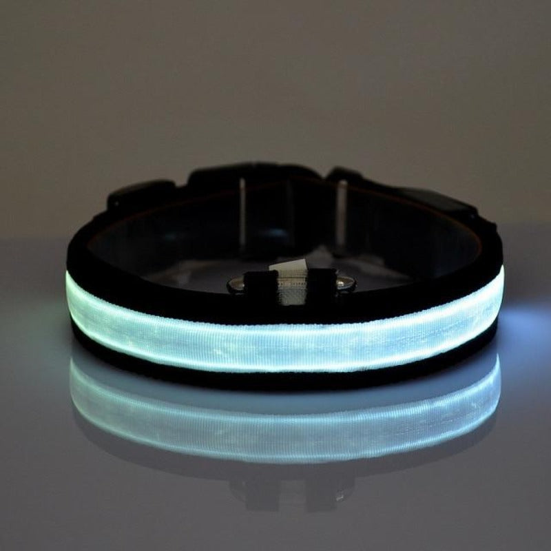 Glow In The Dark Dog Collar with Blue LED light